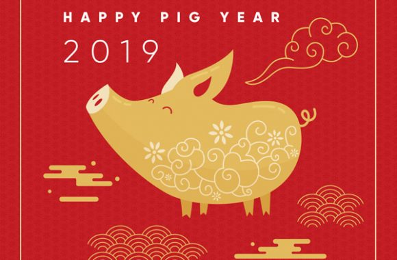 Chinese Spring Festival 2019 Holiday Notice